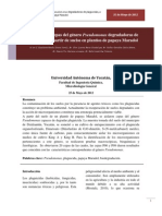 PSEUDOMONAS DEGRADADORAS DE PLAGUICIDAS_MICROBIOLOGÍA