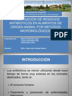 Investigacion de Antibioticos Final