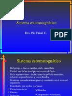 Componentes_esqueléticos_del_sistema_masticatorio
