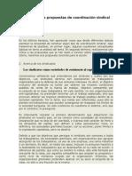 Acerca de las propuestas de coordinación sindical