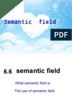 6.6-SemField