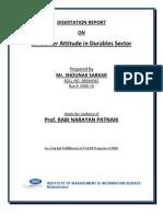 final disertation.docx