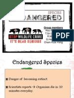 PPT Endangered Species