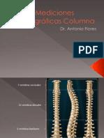Columna[1]