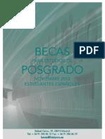 Bases-XIII-Programa-de-Becas-posgrado.pdf