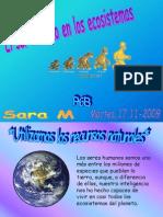 2saramhumana-101104001221-phpapp01