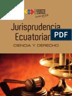 Jurisprudencia_2012