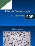 24172992 Atlas Bacteriologia (1)