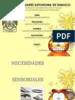 necesidades sensoriales