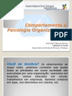 Comportamento e Psicologia Organizacional - Marcela
