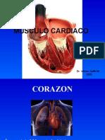 Histologia - 10 - Musculo Cardiaco.01.06.09