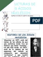 ESTRUCTURAS DE LOS ÁCIDOS NUCLÉICOS-FIN-1