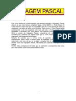 Apostila Turbo Pascal.pdf