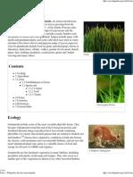 Wiki - Grass