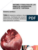 anatomiacardiacav2-1-120303062807-phpapp01
