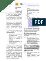 Examen 1-Bienes y Derechos Reales-2009A