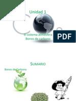 Contaminacion Atmosferica Bonos de Carbono