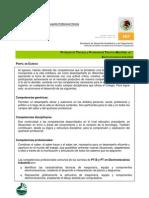 Perfil de Egreso_P.T.B. Electromecanica Industrial
