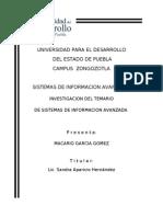SISTEMAS DE INFORMACION AVANZADA.doc