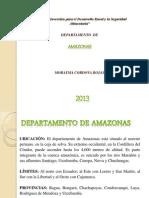 Departamento de Amazonas 13
