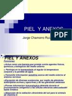1-piel-y-anexosmedicina2001-1225677272452908-9 (1)