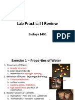 Lab Practical I Review