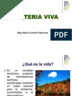 materiaviva-100828200921-phpapp02