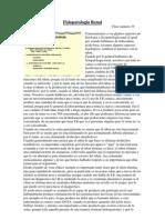 3 10 Fisiopatologia Renal