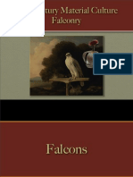Sports & Sportsmen - Falconry