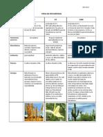 2011 DB2 Tipos de Fotosintesis