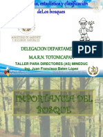 Importancia, estadística y clasificación de bosques Guatemala