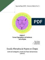 Memoria Módulo 3 Formas Organizativas 2009.pdf