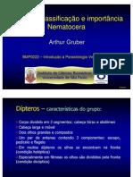 Dipteros_Nematocera