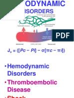 Ch4-Hemodyn-1