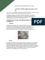 Proceso Tecnico-Ingeniro (Robotica)1