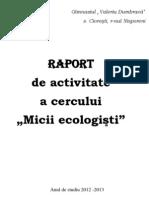 Raport de Activitate a Cercului.docx 3