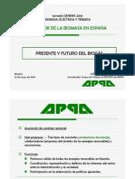 Presente Futuro Biomasa