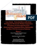 Literature Review - Diversification Strategy for Electronic Media in Pakistan