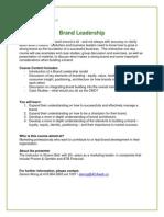Brand Leadership Synopsis