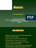 Malarial Nephropathy