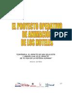 LOS PROYECTOS OPERATIVOS DE ANIMACIÓN.doc