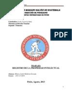 Registro de La Propiedad Intelectual