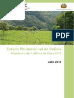 Monitoreo de Cultivos de Coca en Bolivia 2013