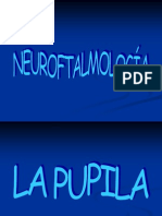 Leccion 23 Neurooftalmologia