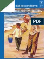 Diabéticos - como cuidar dos seus rins.pdf