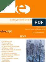 Articles-104886 ArchivoPowerPoint 0