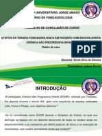 Slide de Tcc(1)