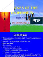 Lect 3 Diseasesofesophagus 121203074045 Phpapp01