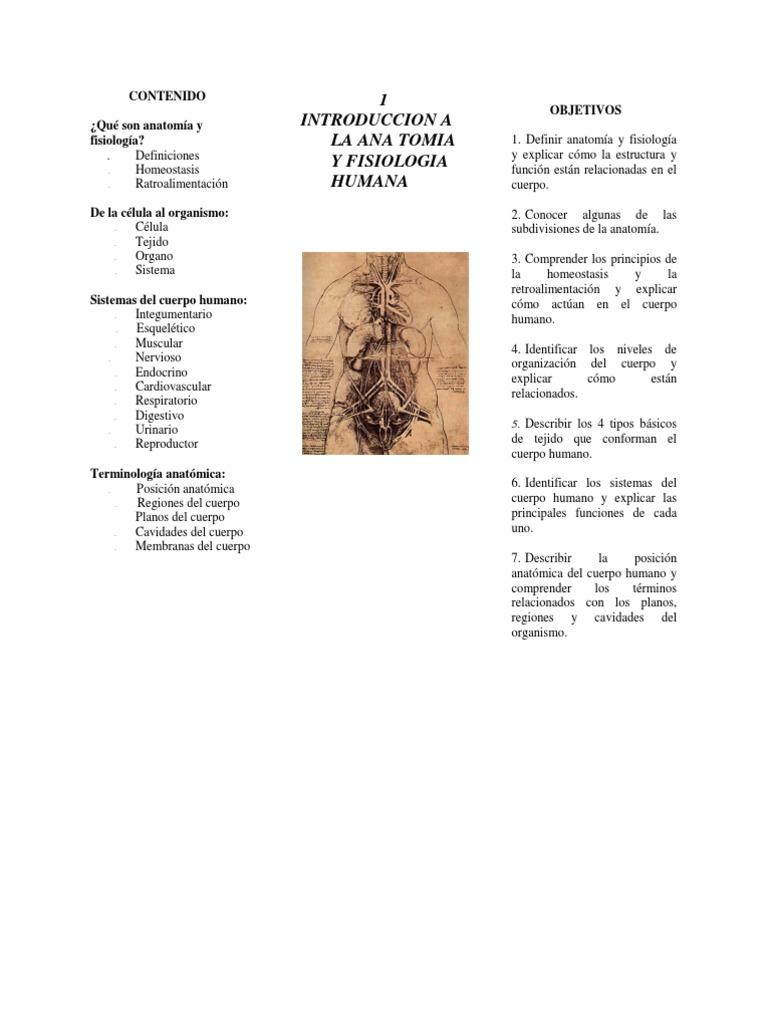 Encantador Definir La Anatomía Y La Fisiología Y Explicar Su ...