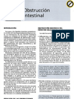 obstrucción intestinal